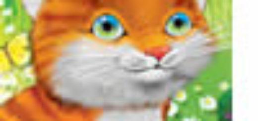 Łukasz Porawski - Mój tydzień jako kot
