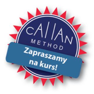Edu Owls Callan